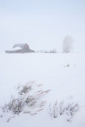 Andy Chambers Ranch in winter and fog